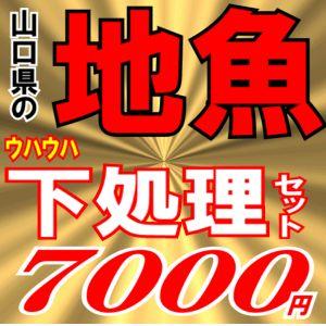 <送料無料>魚かつの下処理鮮魚セット7000円分【煮付け】【焼き魚】【刺身】