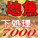 <送料無料>魚かつの下処理鮮魚セット7000円分