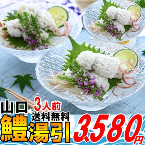 鱧(はも)湯引き3人前お中元 送料無料初夏の魚夏セール2018
