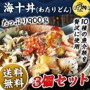 海十丼(わたりどん) お得な3個セット(900g)10種の豪華海鮮を贅沢に味わえる逸品 【送料無料】【海鮮】 【ギフト/父の…