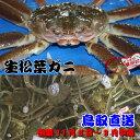 活松葉ガニ(生)、鳥取県産、日本海産、松葉ガニ特大サイズLL、1枚約1kg(ズワイガニ)!!漁期11月6日〜3月中旬