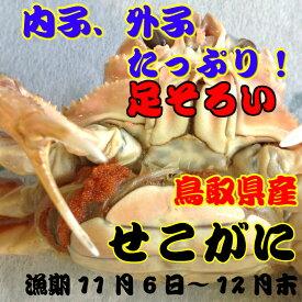 セコガニ(親ガニ せいこがに) 大サイズ 足そろい 鳥取県産 日本海産 セコガニ(ズワイガニのメス)5枚で約900g前後セット(ボイル前) 漁期11月6日〜12月下旬