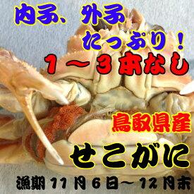 セコガニ(親ガニ、せいこがに)小サイズ 足1〜3本なし鳥取県産 日本海産(ズワイガニのメス)5枚で約500g前後セット(ボイル前)!!!漁期11月6日〜12月下旬