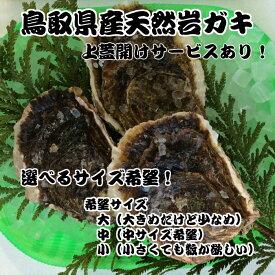 鳥取県、天然岩ガキ!ど〜んと2kgセット!海のミルクが濃厚でうまい!天然ならではの味わい。6月〜8月下旬。