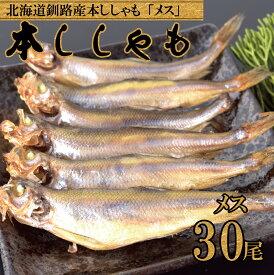 北海道直送 子持ち本ししゃも メス 30尾 北海道産 本物の味 釧路産 送料無料 ししゃも シシャモ 雌 旨い 情熱価格