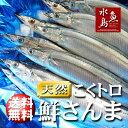 【送料無料】秋刀魚 こくトロ生サンマ 刺身用 特大4kg 30〜35尾