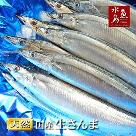 秋刀魚 こくトロ生サンマ 刺身用 特大2kg 13〜16尾