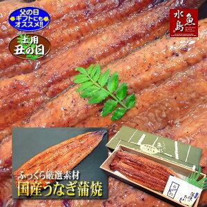 【父の日ギフト】【土用丑の日】国産 鰻うなぎ蒲焼き ふっくら厳選素材 約30cm 特々大 約200g×1尾