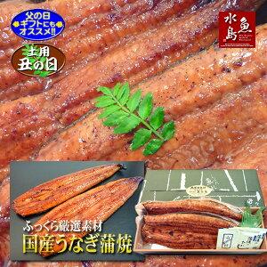 【父の日ギフト】【土用丑の日】国産 鰻うなぎ蒲焼き ふっくら厳選素材 約30cm特々大 約200g×2尾