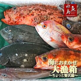 厳選 日本海の鮮魚セット「海におまかせ・大漁箱 ちょっと贅沢編」大満足詰め合わせ
