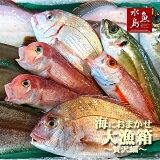 厳選日本海の鮮魚セット「海におまかせ・大漁箱たっぷり贅沢編」大満足詰め合わせ