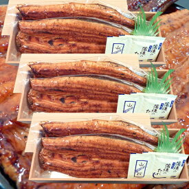 炭火焼 鰻うなぎ蒲焼き ふっくらとろける極旨ウナギ 約30cm特々大 約200g×2尾×3セット 土用丑の日/お中元ギフト【送料無料】