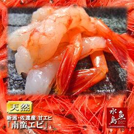 佐渡産 甘エビ「南蛮エビ」鮮度抜群・刺身用 500g(冷凍)