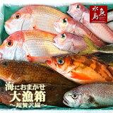 【送料無料】厳選日本海の鮮魚セット「海におまかせ・大漁箱超贅沢編」大満足詰め合わせ