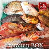 【送料無料】厳選日本海の鮮魚セット「海におまかせ・大漁箱プレミアムBOX」大満足詰め合わせ