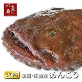 【送料無料】新潟・佐渡産天然あんこうアンコウ一匹丸もの3kg以上