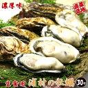 牡蠣 殻付き 生食用 30個入り 値下げ敢行 【送料無料】 産地直送 ダイレクト便 生牡蠣 生食用 生牡蛎 かき カキ 鳥 国…