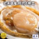 ほたて ホタテ 帆立 片貝 貝付ほたて 10枚 最安値 冷凍 北海 バーベキュー 殻付き お取り寄せ バーベキュー 海鮮 BBQ …