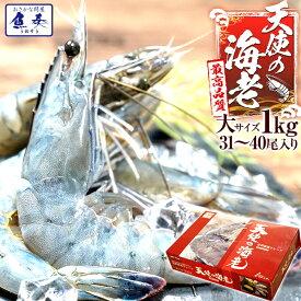 【期間限定4980円】最安値挑戦中 海鮮 天使の海老 有頭 1kg お取り寄せ お試し世界最高品質 刺身 生食 冷凍 高級 てんしのえび 送料無料 おかず セット