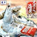 最安値挑戦中 海鮮 天使の海老 有頭 特大サイズ 1kg×2 お取り寄せ お試し世界最高品質 刺身 生食 冷凍 高級 て…