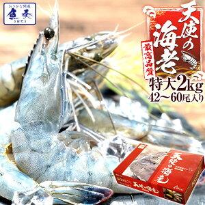 最安値挑戦中 海鮮 天使の海老 有頭 特大サイズ 1kg×2 お取り寄せ お試し世界最高品質 刺身 生食 冷凍 高級 てんしのえび 送料無料 おかず セット