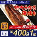 うなぎ蒲焼お試しセットギフト父の日送料無料ウナギ鰻お買い得最安値