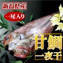 新潟県産・甘鯛(アマダイ)の一夜干(一尾)