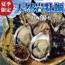 【送料無料】天然岩牡蠣10個セット(割ってお届け) ランキングお取り寄せ