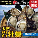 【夏季限定】日本海産・天然岩牡蠣(割ってお届け)
