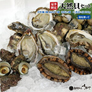 天然貝セットB+b【岩牡蠣4個(殻を割ってお届け)、あわび1個、さざえ4個、煮バイ貝200g】