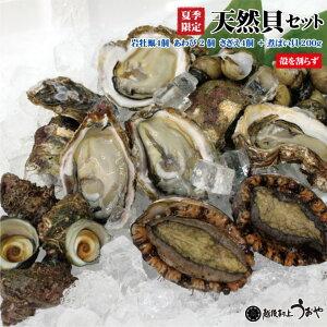 天然貝セットC+b【岩牡蠣4個(殻を割らずに)、あわび2個、さざえ4個、煮バイ貝200g】