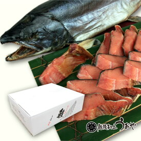 塩引き鮭一尾 【切り身にしてお届け】 生時5.0kg