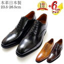 【楽天1位】 シークレットシューズ メンズ ビジネスシューズ 本革 革靴 国産 日本製 革靴 6cmUP 3E 内羽根 紳士靴 背…