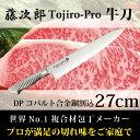 包丁 牛刀 藤次郎 Tojiro-Pro 刃渡り27cm 日本製 ナイフ プロ用 業務用の切れ味 包丁 藤次郎 Made in Japan