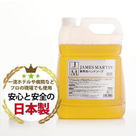JAMES MARTIN ジェームズマーティン 詰替え用 薬用泡ハンドソープ 5リットル 5L 除菌 消臭 インフルエンザ ノロウイルス 消毒【キャンセル不可】