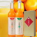 長崎恋みかんミックス「原口みかん」「させぽ温州」500ml×2本箱入りストレート果汁100%ジュース/14セット