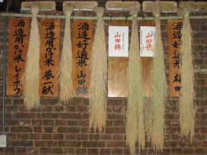 繁桝日本酒300年記念飲み比べ大吟醸純米吟醸他6本セット720ml超厳選!高級料亭も納得!和食に合う日本酒