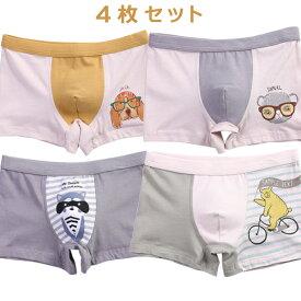 男の子 子供 パンツ 4枚セット 下着 ボクサーパンツ 2セットで送料無料 キッズ ベビー アニマル 100 110 120 130 140 cm TD0150 TeddyDoctor