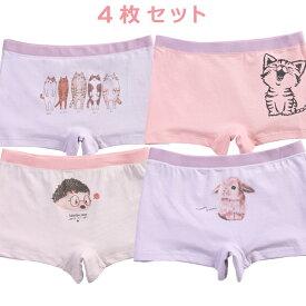 【2セットで送料無料】女の子 子供 パンツ 4枚セット 下着 ボクサーパンツ キッズ ベビー ウサギ ネコ 猫 かわいい 100 110 120 130 140 cm TD0151 TeddyDoctor