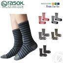 Rasox ca132cr01 1
