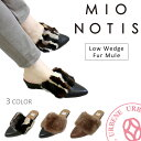 Mionotis-238b_1