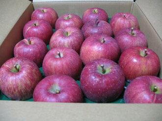 야마가타 남양 산 『 후 지 사과 』 5kg_ 가정용 크기 여러가지 2 상자 주문 상자 서비스!! 12 월 배송