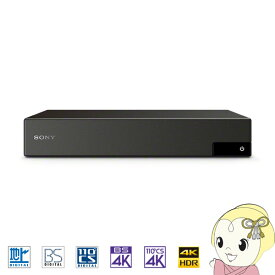 DST-SHV1 ソニー 4K放送対応チューナー(ダブルチューナー) 裏番組録画対応【/srm】【KK9N0D18P】