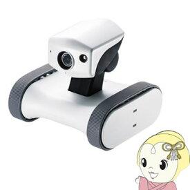 RB-RILEY サンワサプライ ロボット防犯カメラ アボットライリー【smtb-k】【ky】