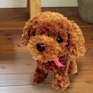 ◎元気な仔犬トイプードルのショコラちゃん[犬 ぬいぐるみ 動物 動く 音声認識 人形 おもちゃ トイ 音 センサー 反応 アクション おしゃべり しゃべる ペット ギフト プレゼント 子ども こど