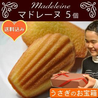 [送料無料]うさぎのお宝箱レモンマドレーヌ5個ふわっと薫るふんわりおいしいやさしいおやつ詰め合せギフトプレゼント贈り物におすすめ手作りお菓子【RCP】祝・合格[おめでとう]ラベルあります。