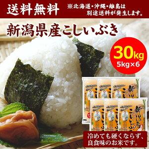 【送料無料】田中米穀 新潟産こしいぶき 30kg(5kg×6袋)