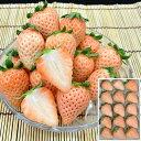【2020お歳暮 送料無料】奈良県産 白いちご 9〜15個(約200g)