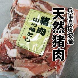 ジビエ 天然 猪肉 兵庫県 丹波産 お得な 切り落とし 500gパック! ぼたん鍋 牡丹鍋 猪鍋 冷凍便