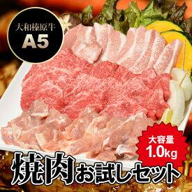 焼肉お試しセット 大容量1.0kg (5〜6人前) 大和榛原牛A5上カルビ + 銘柄鶏 + 豚トロ + 粗挽きソーセージ 送料無料牛肉 黒毛和牛 A5 大和美豚 焼肉 焼き肉 ヤキニク BBQ カルビ かるび RCP